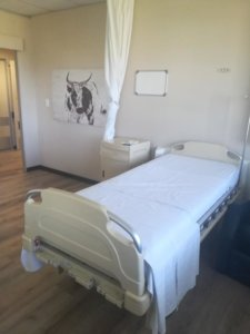 Physiotherapist, Physio Cape-Town-Hip Replacement-Frail Care-old age-senile-retirement home-hospice-Recovery- Rehabilitation, Step Down Hospital - Physical rehabilitation-hospital-Cape Town-Nurture-Harmony-Methodology